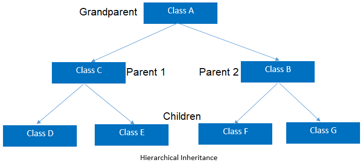 OOPs Inheritance Types: Hierarchical Inheritance